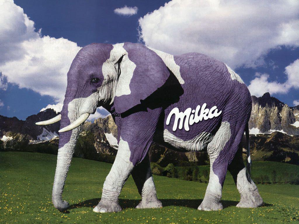 milkaelephant01.jpg